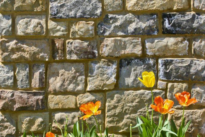 Steinmauer anlegen