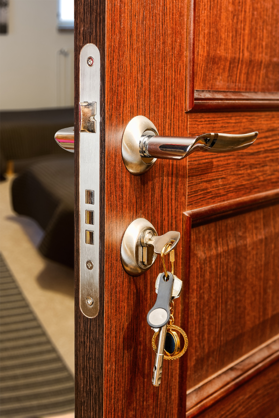 t rschloss reinigen so wird 39 s gemacht. Black Bedroom Furniture Sets. Home Design Ideas