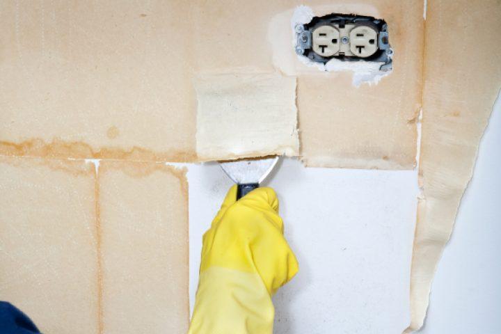 Tapezieren richtige Wandvorbereitung