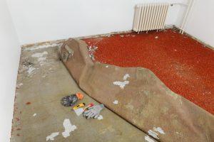 Teppich entfernen Preise
