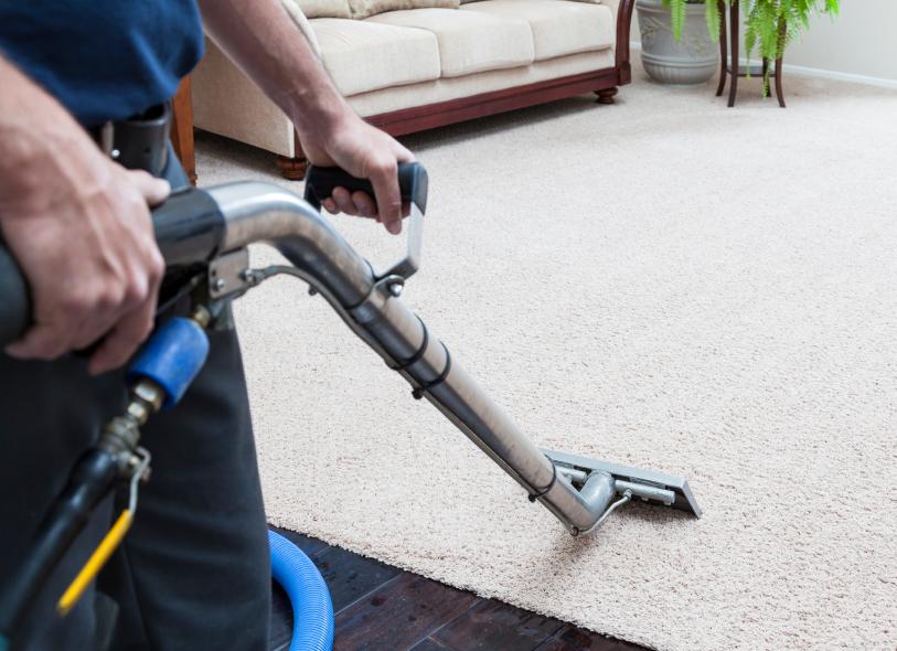 Teppichboden reinigen » So wird er porentief sauber