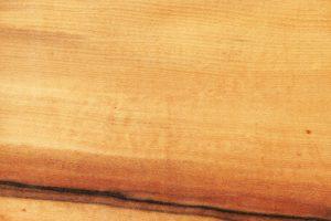 Tineo Holz