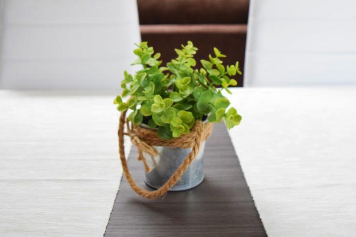 Topfpflanze Tisch