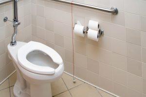 Toilette austauschen