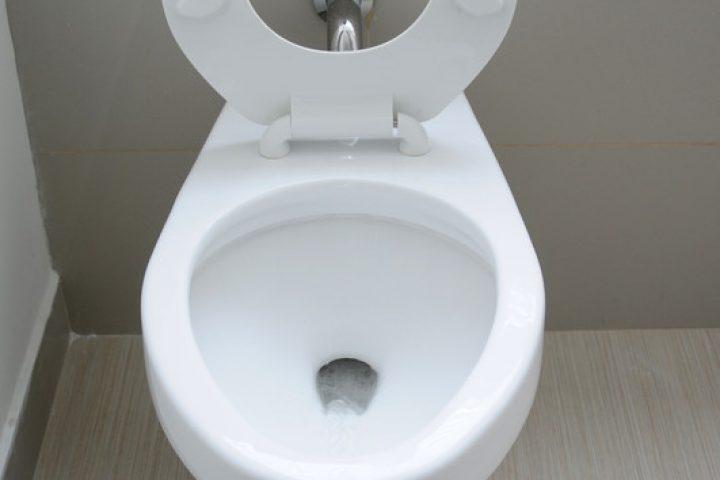 Toilette einbauen