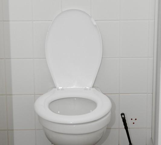 Toilettenspülung Defekt Was Können Sie Selber Tun