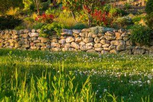 Trockenmauer Garten