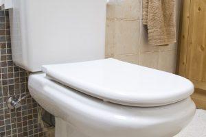 WC Spülkasten entkalken