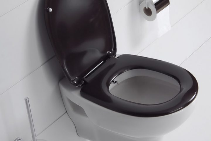 WC Vorwandinstallation