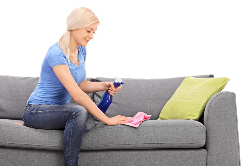 Wasserflecken von sofa entfernen so geht 39 s Hundeurin aus sofa entfernen