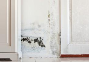 geb udeversicherung welchen wasserschaden deckt sie ab. Black Bedroom Furniture Sets. Home Design Ideas