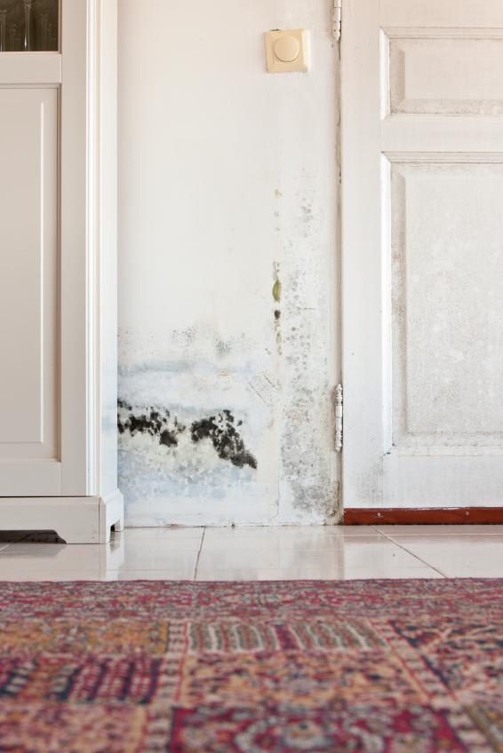 wasserschadensanierung das ist beim planen zu bedenken. Black Bedroom Furniture Sets. Home Design Ideas