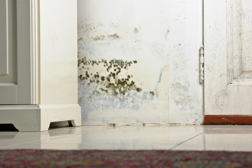 wasserschaden in der mietwohnung das sollten sie wissen. Black Bedroom Furniture Sets. Home Design Ideas