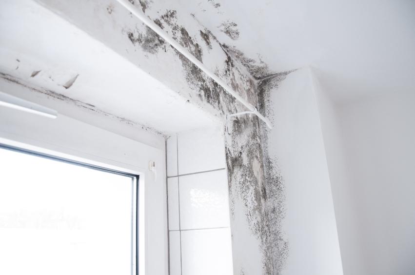 mietminderung bei wasserschaden was ist m glich