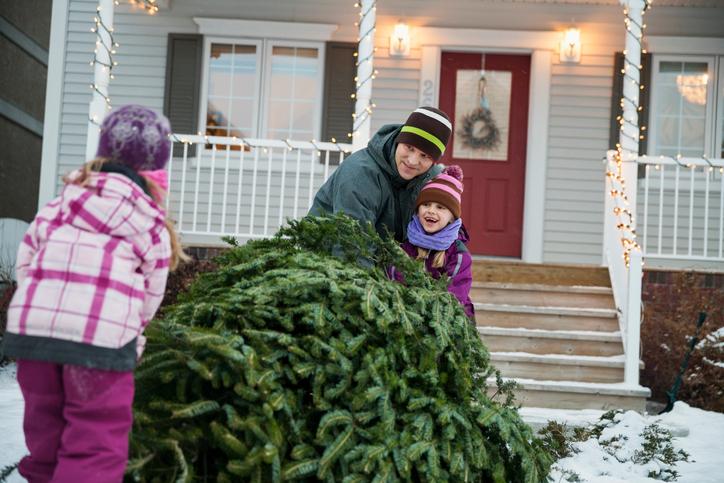 Wann Weihnachtsbaum Aufstellen.Weihnachtsbaum Aufstellen So Gehen Sie Vor