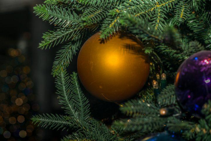Weihnachtsbaum wässern