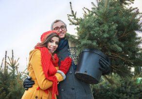 weihnachtsbaum mieten kosten vor und nachteile. Black Bedroom Furniture Sets. Home Design Ideas