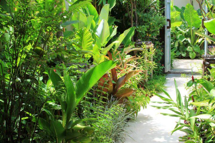 Wintergarten Kunststoff