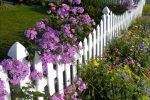 Zaun statt Gartenmauer