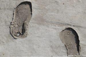 Zement wie lange trocknen