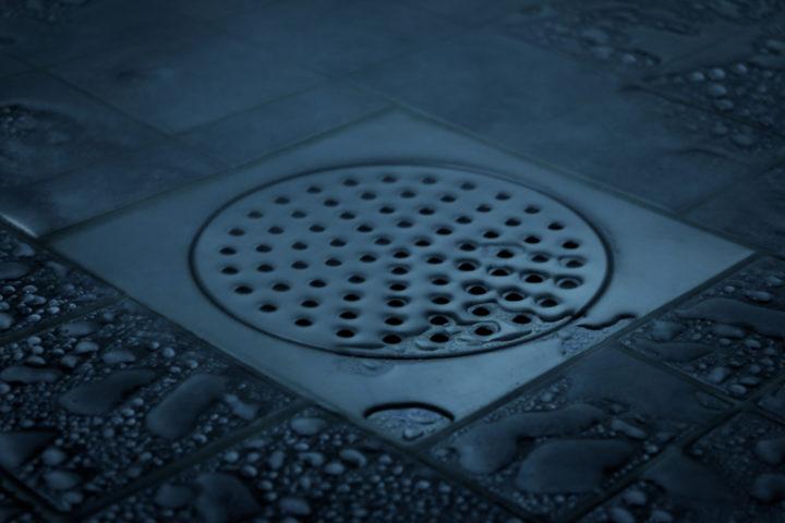 abwasser-kommt-in-dusche-hoch