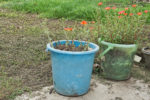 alte-muelltonne-bepflanzen