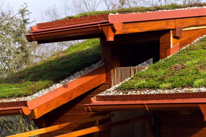 aufbau-gruendach-auf-holzbalkendecke