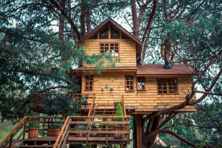 baumhaus-wohnen