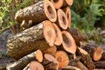 brennholz-ablaengen