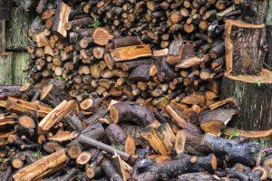 brennholz-feuchtigkeit