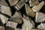 brennholz-schimmel