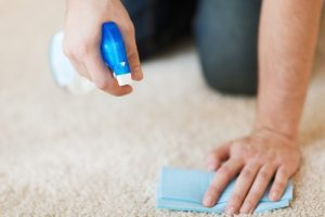 Wasserflecken Polster, Kleidung, Teppich