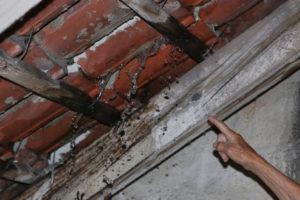 Dach Undichte Stelle Finden