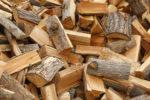 douglasie-brennwert
