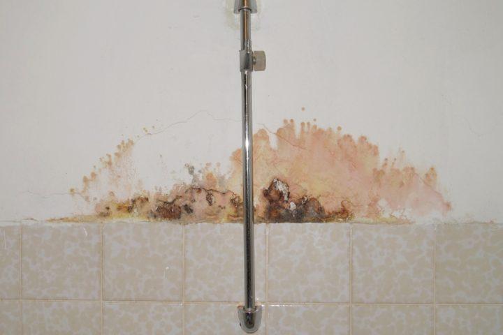 dusche-hinter-wand