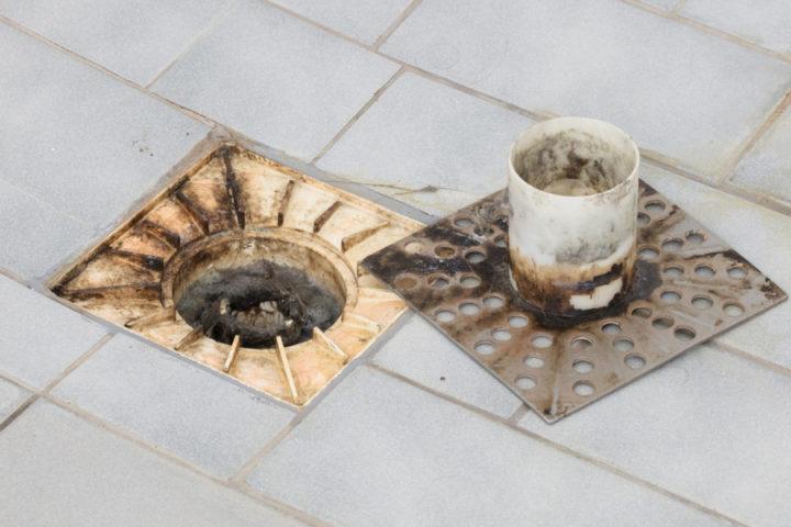 dusche-siphon-reinigen
