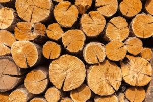 eichenholz-trocknen-ohne-risse