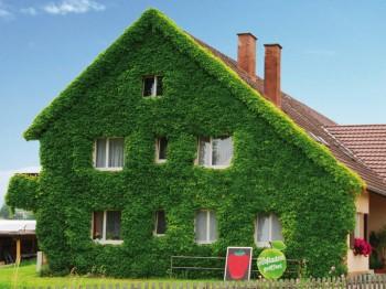 Hausfassaden - Preise, Bilder und Gestaltungsmöglichkeiten