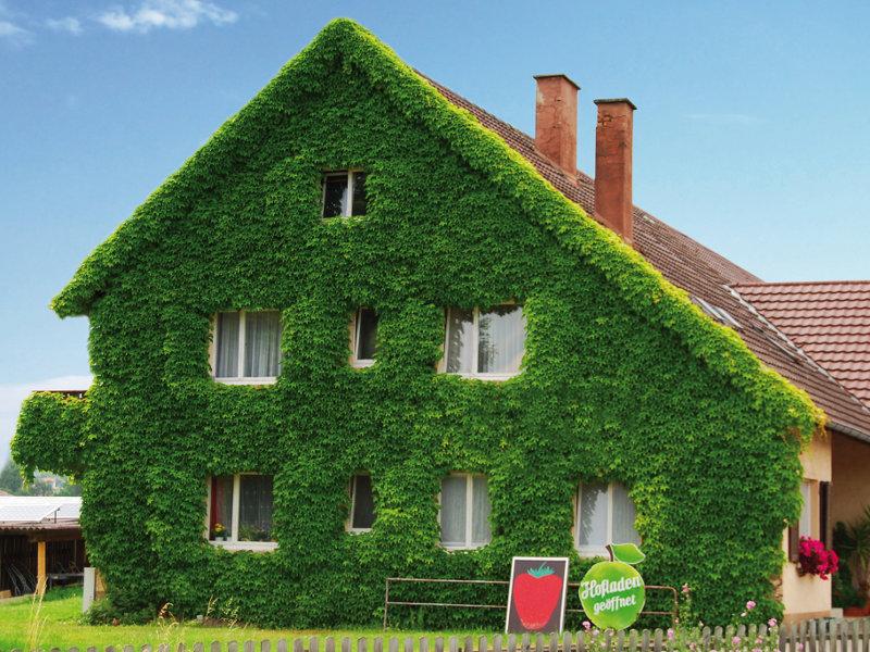 Hausfassaden Preise Bilder Und Gestaltungsmoglichkeiten