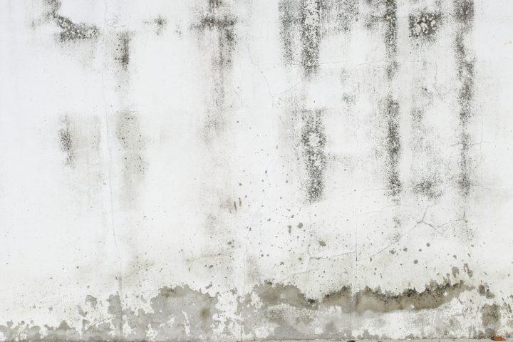 Feuchte Wände sanieren » Die Maßnahmen im Überblick