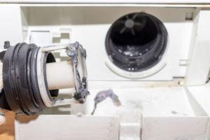 flusensieb-waschmaschine-wie-oft-reinigen
