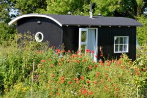 gartenhaus-rundes-dach