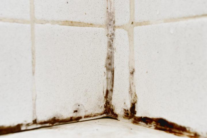 hausmittel-gegen-schimmel-in-der-dusche