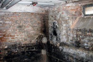 Kellersanierung Kosten