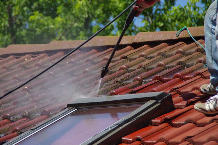 moosvernichter-dach