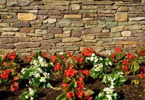 Natursteinmauer Kosten