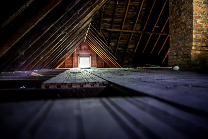 osb-platten-dachboden-schimmel