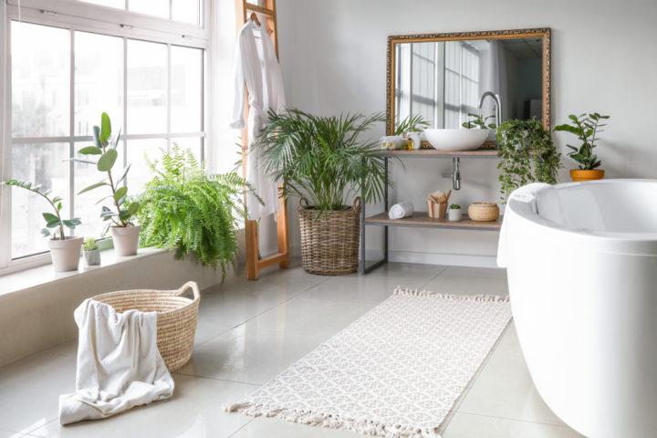 pflanzen-im-badezimmer
