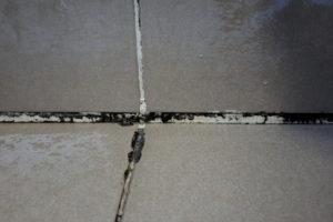 schimmel-dusche-entfernen-mit-backpulver