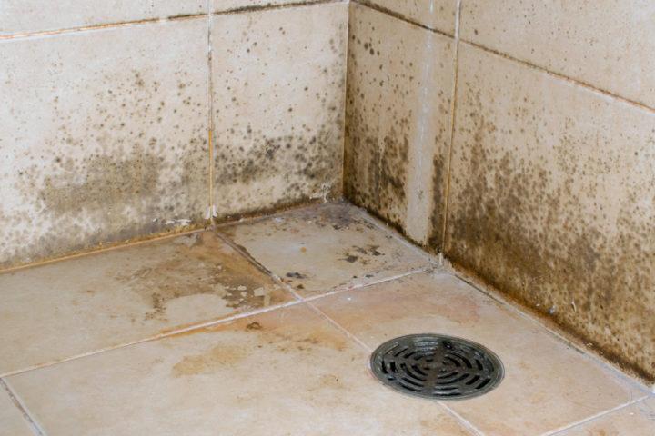 schimmel-im-badezimmer-entfernen